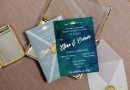 "INVITATIE DE NUNTA "" FOREST GREEN "" , SIGILIU GOLD, PLIC TRASPARENT, FOLIO GOLD"