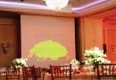 DESIGN BOTEZ | MARRIOTT GRAND HOTEL - TREE OF LIFE, SIMBA - REGELE LEU, LION KING