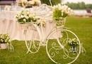 Design Nunta tema bicicleta / Cernica Phonix Restaurant