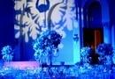 Nunta Palatul Snagov, Ionut & Andreea - Winter Love Story Wedding Themed